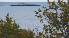 Rocky outcropping off the coast of Marblehead, Massachusetts. Stock Footage