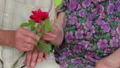 Old hands. Hands of the old people. Grandpa gives a rose his grandma. - stock footage