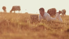 Young businessman working outdoors with laptop wide shot Stock Footage