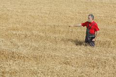 Agricultural scene, farmer or agronomist inspect wheat field Stock Photos