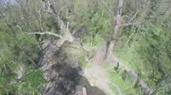 Areal shot of trees and stream 1080p Stock Footage