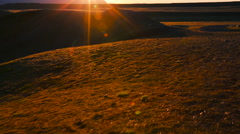 Aerial Shot of Sunrise of Golden Field - stock footage