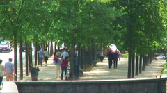 Tree-lined walkways in a European city. Stock Footage