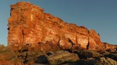 Bird of prey over cliff coast Australia Stock Footage