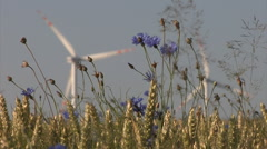 Wheat ears and cornflowers with a wind turbines in the background Stock Footage