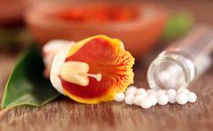Homeopathy globules with herbal flower - stock photo