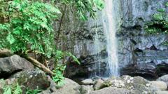 Small waterfall with rocks and greenery in Hawaii. Stock Footage