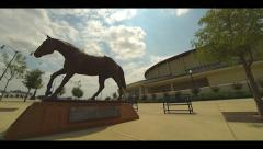 Horse Statue Timelapse Stock Footage