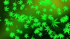Flying cannabis leaves on green Stock Footage