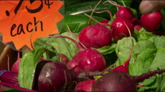 Hand grabs radishes in slow motion Stock Footage