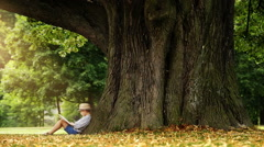 Little boy reading a book sitting at the foot of a big linden tree Stock Footage