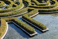 Fragment of wonderful garden flowers maze during a sunny day Stock Photos