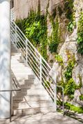 Stairs near the green creeper plant on brick wall Stock Photos