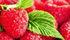 Red juicy ripe close-up. Stock Footage