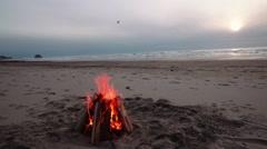 Bonfire Burning on a Beach Arkistovideo