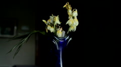 Stock Video Footage of Dried Out Flowers In An Old And Dusty Vase, Nostalgia, Forgetfulness, Tilt