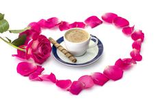 Cup of coffee petals of roses and scarlet rose Stock Photos