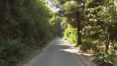 Camera moves in the midst of lush vegetation along a narrow road. Stock Footage