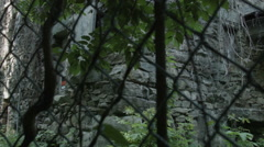 Castle, abandoned and overgrown in forest, stone walls - stock footage