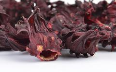 dry roselle isolated on a white background - stock photo