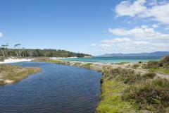 Maria Island Tasmania beach wilderness - stock photo
