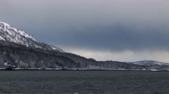 Snowy pine trees in Alaska Glacier Bay Stock Footage
