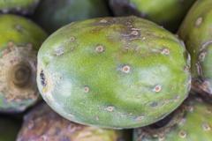 Fruits of Opuntia ficus-indica, cactus fruit (tuna) on a market in Peru,  natura - stock photo