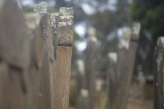 Isle of Deads Port Arthur Tasmania - stock photo