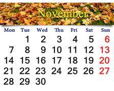 Calendar for November 2016 with the moss and leaves Stock Illustration