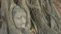 Head of sand Buddha statue in the tree roots at Wat Mahathat, Ayutthaya Stock Footage
