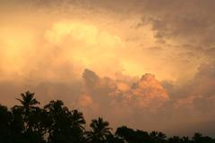 Storm clouds over forest at sunset - stock photo