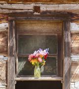 Flower Vase In Window Kuvituskuvat