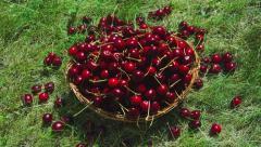 Fresh cherry in basket timelapse Stock Footage