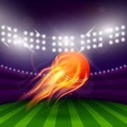 Stadium Of Cricket Night - stock illustration