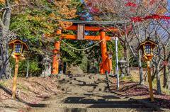 Torii in Colorful Autumn Leaf Season in Japan Stock Photos