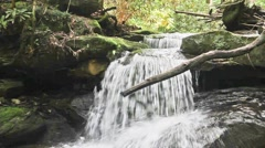 Soothing Backwoods Waterfall Stock Footage
