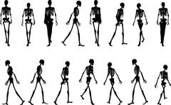 skeleton silhouette in walk - stock illustration