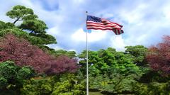 Waving flag of the United States of America Piirros