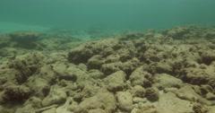 Underwater Caesarea antiquities old Harbor 4K Stock Footage