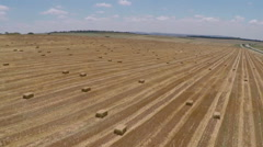 aerial view of hay bales on the field after harvest at noon - stock footage