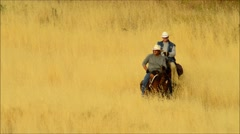 Ride'em Cowboy Stock Footage