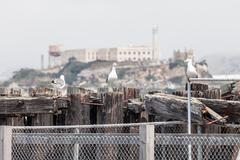 Seaview of Alcatraz Stock Photos