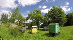 Old wooden beehives in garden and clouds motion. Timelapse 4K Stock Footage