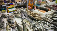 Fish market in Portugal Stock Footage