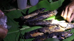 Grilling fish on campfire Stock Footage