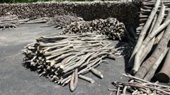 Large felled wood and branches heap, barbecue coal, log stack site - stock footage