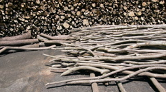 Large felled wood and branches heap, barbecue coal, log stack site Stock Footage