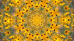 Abstract flower  kaleidoscope background pattern hd Stock Footage