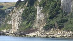 Seaton Bay White Chalk Cliffs in Devon - stock footage