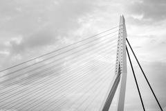 Close up of Erasmus Bridge in Rotterdam - stock photo